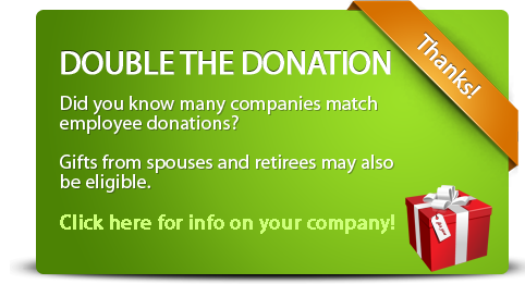 double-the-donation-detailed-green.png